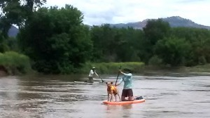stand up paddle board on the animas river durango colorado