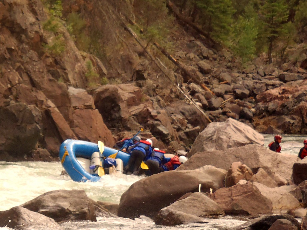 Upper Animas River Mandatory Thrashing Rapid