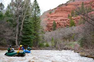 Rafting near Telluride on the San Miguel - Half Day Trips