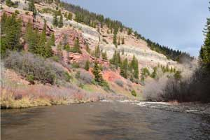 Rafting near Telluride on the San Miguel - Full Day Trips