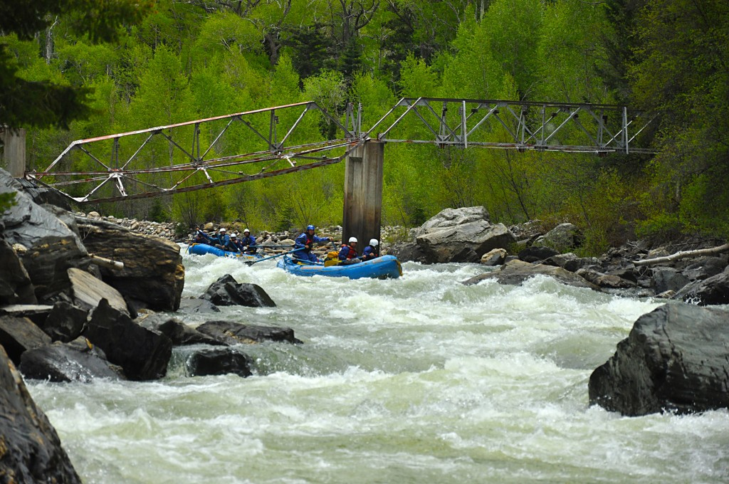 Broken Bridge Rapid, Upper Animas, Mountain Waters Rafting