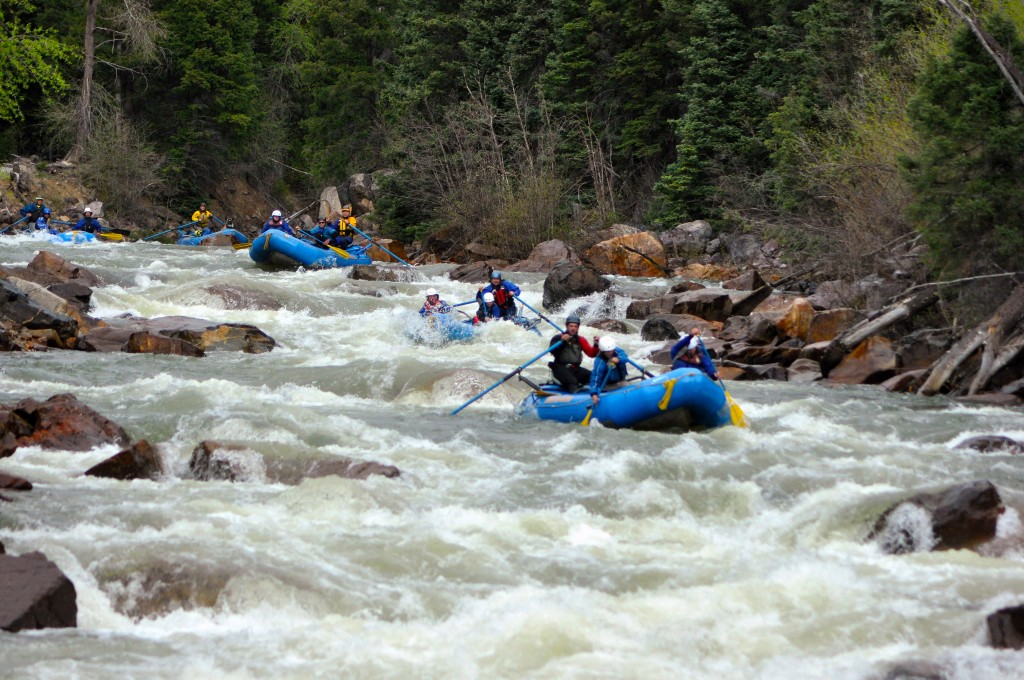 10 Mile Rapid, Class IV, mile 8, Silverton Stretch at low water with Mountain Waters Rafting